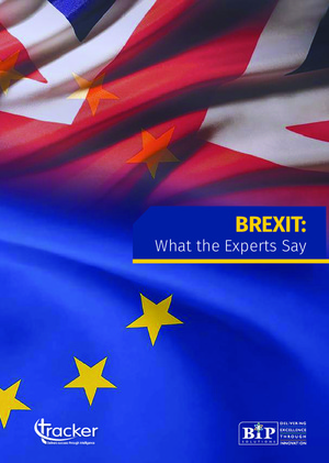 Industry Report - Brexit: What the Experts Say