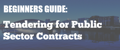Beginners Guide: Tendering for Public Sector Contracts